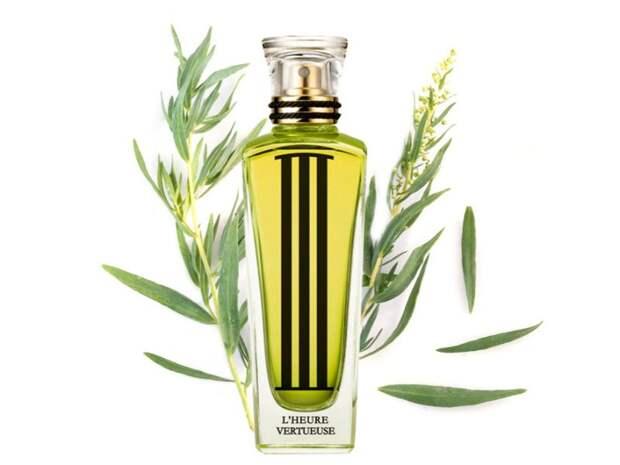 6-zelenih-mirisa-kojima-cete-ostaviti-trajni-utisak-3135-WI