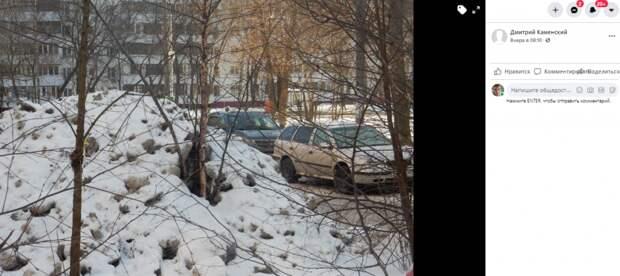 Дерево в проезде Шокальского утонуло в снегу
