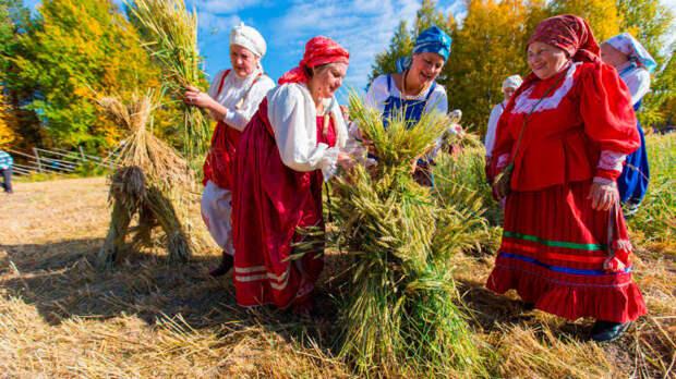 Названы народные приметы 17 мая для садоводов и огородников