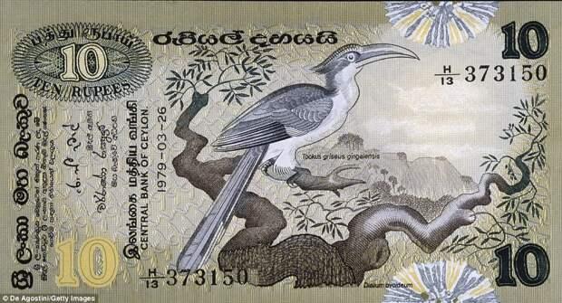 10 шри-ланкийских рупий