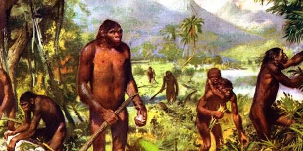 Ученые нашли доказательства необычного ума у древних