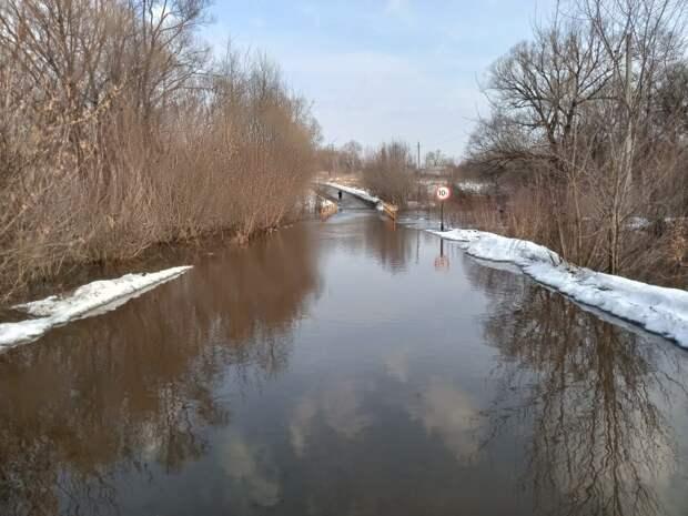 12 мостов закрыли для движения в Рязанской области