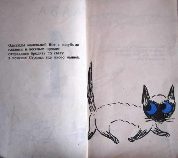 Кот с голубыми глазами