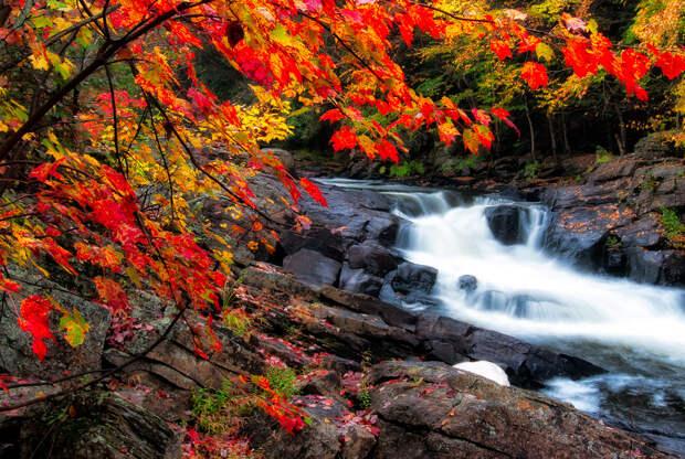 Осень. (James Wheeler)