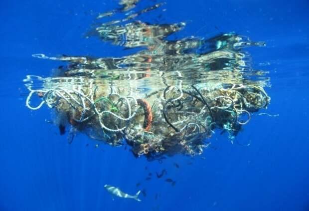 8 жутких фото мусорного острова в Тихом океане, который больше Турции