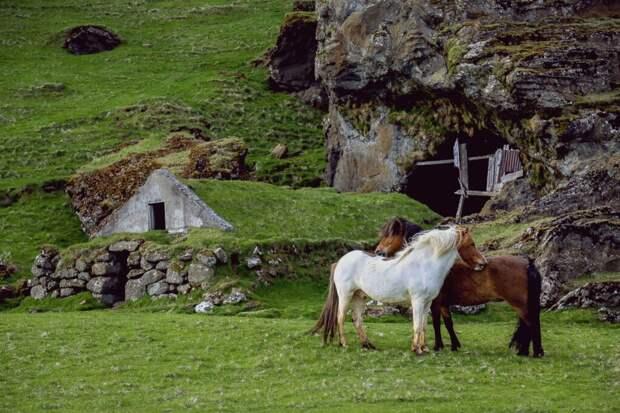 Исландская сказка: в стране отменили все ограничения, наложенные из-за COVID-19