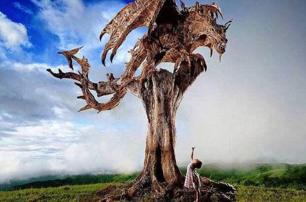 Художник превратил коряги впрекрасные скульптуры движущихся животных