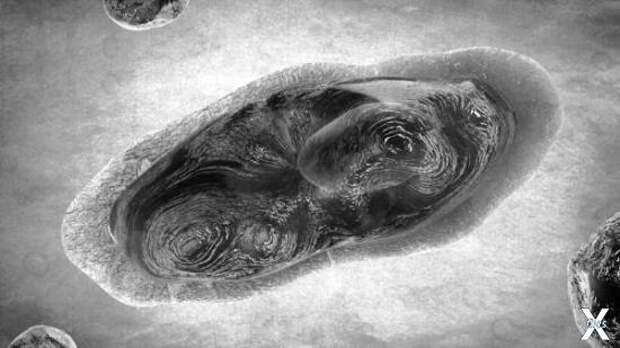 Пандоравирус – один из крупнейших сре...