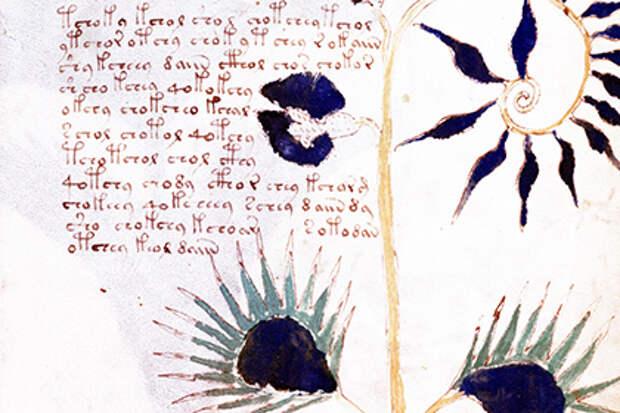 Таинственный манускрипт Войнича оказался подделкой