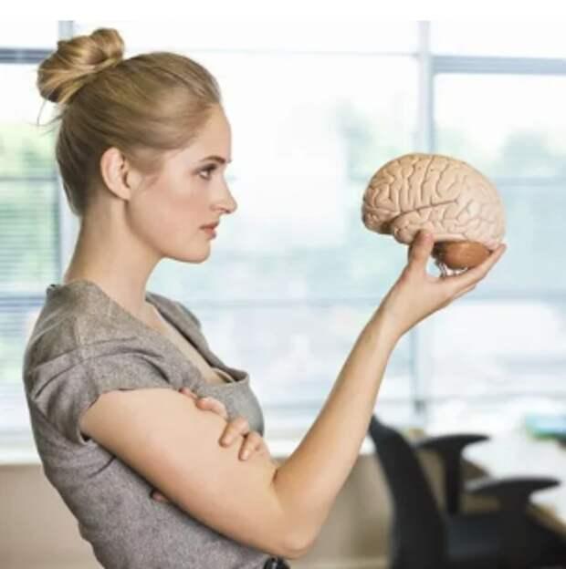 Вечный вопрос: кто же всё-таки умнее — мужчины или женщины?
