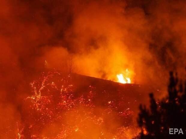 Дым от пожаров в США достиг Европы – экологи
