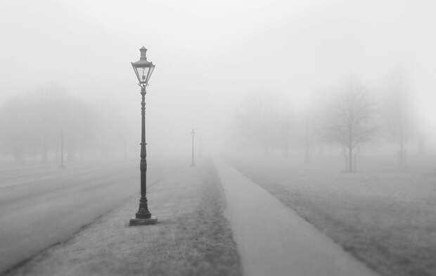 Жителей Удмуртии предупредили о тумане на дорогах
