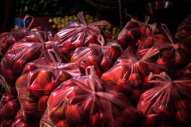 Молодежный парламент Удмуртии предложил ограничить продажу полиэтиленовых пакетов