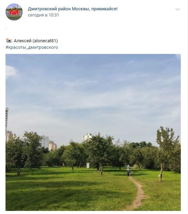 Фото дня: закрылся «сезон загара» яблоневом саду на Ангарских