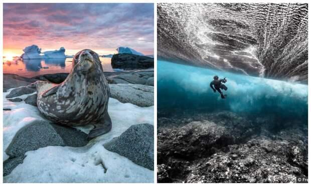Красота имощь океана нафотографиях победителей конкурса Ocean Photography Awards 2020
