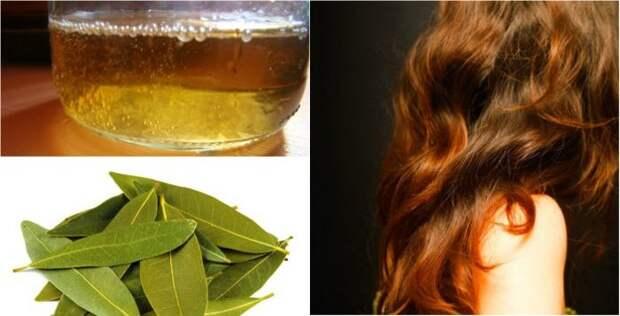 Остановить выпадение волос помогут эти 2 ингредиента! Густые, красивые и здоровые волосы за копейки