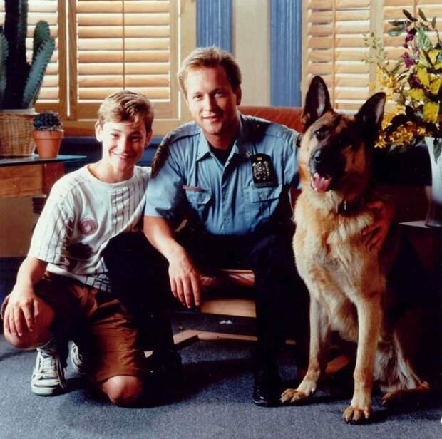 «Комиссар Рекс», «Мухтар» и ещё 10 сериалов про служебных собак