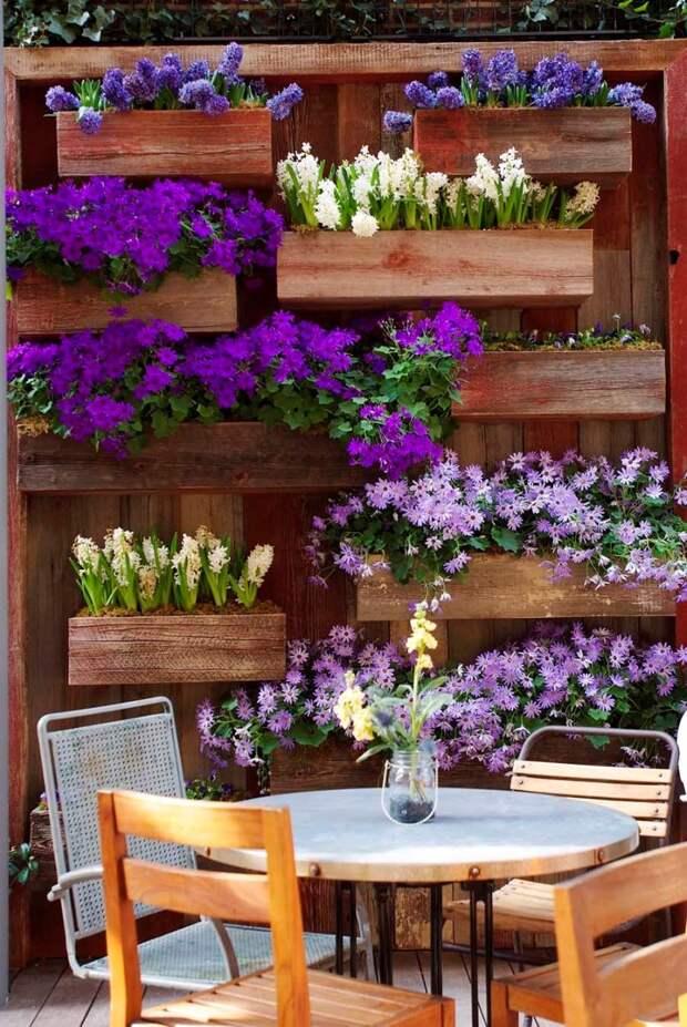 устройство клумб и цветников на даче