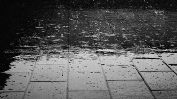Синоптик Волосюк рассказала, когда Москву перестанет заливать дождь