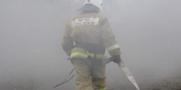 Школьницы устроили пожар на ферме ради ролика для TikTok