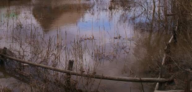 Воды реки Лебяжьей перекрыли трассу «Сибирь»