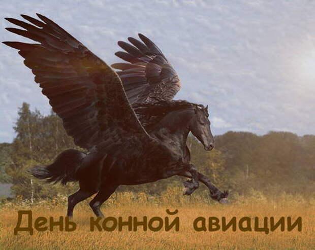 День конной авиации отмечается 19 мая. Что за праздник?