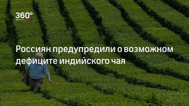 Россиян предупредили о возможном дефиците индийского чая