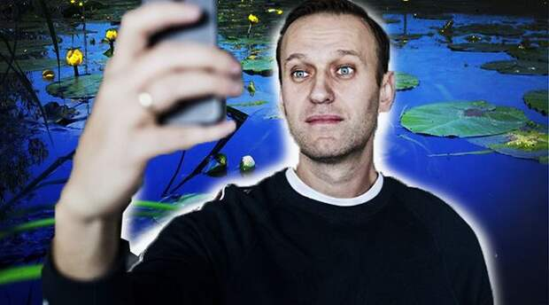 Ололоша Навальный и другие насекомые