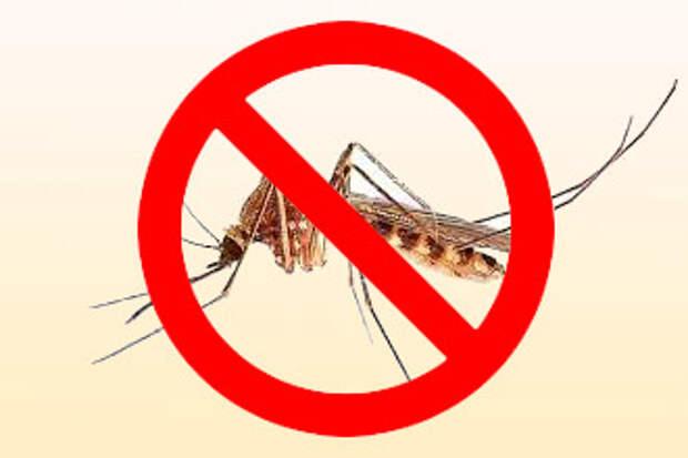 какие комары опасней