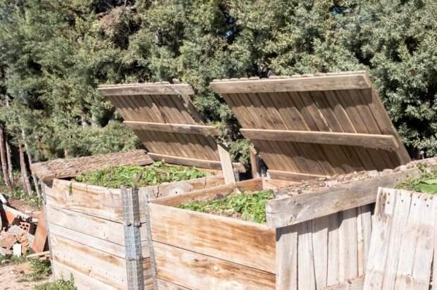 8 ошибок, которые вы совершаете при приготовлении компоста