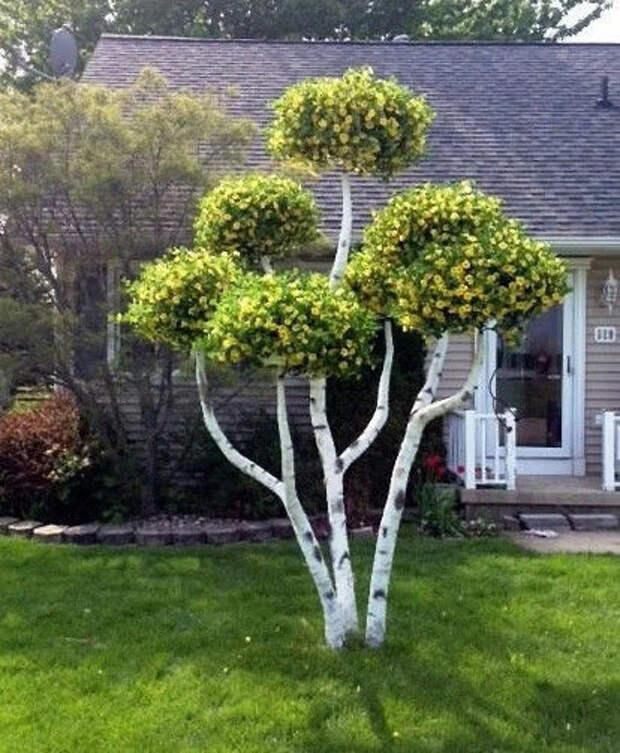 Оригинальная идея по использованию петуний. Сразу и не поймешь, настоящее дерево это или нет.