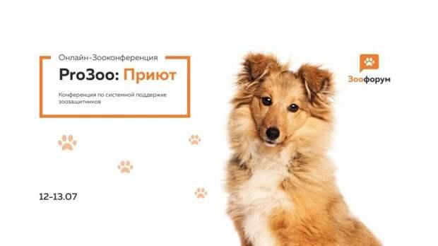 12-13 июля состоится Зооконференция «ProЗоо: Приют»