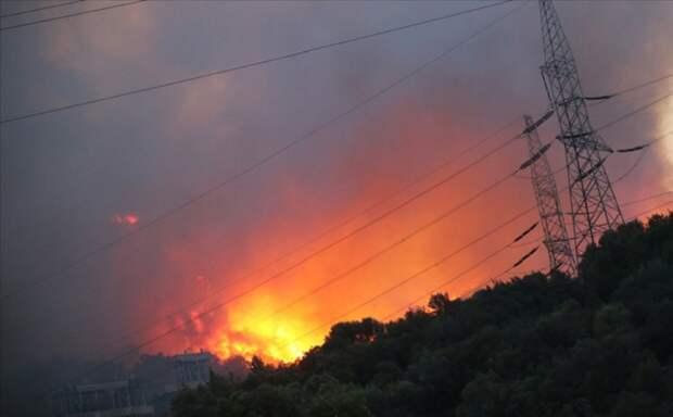 Теплоэлектростанция едва не сгорела в Турции из-за лесного пожара