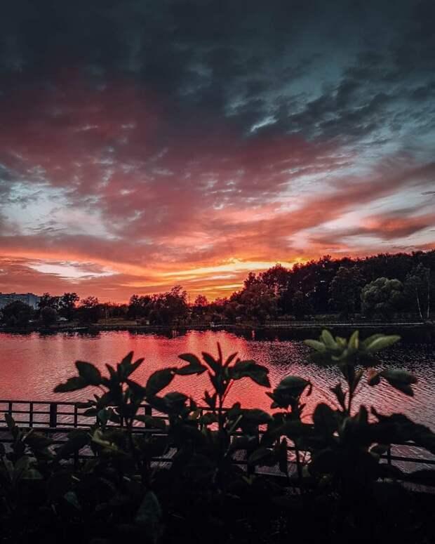 Фото дня: Джамгаровский парк превратился в тайские тропики
