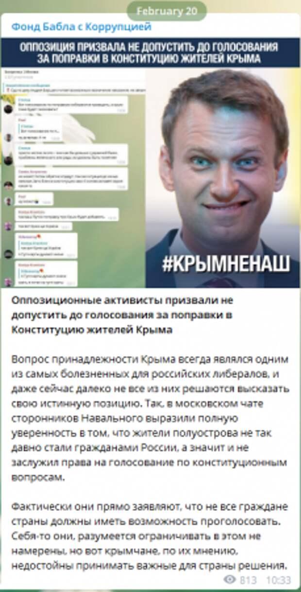 Навальнисты забыли про УК РФ, призывая лишить крымчан права голосовать за поправки в Конституцию