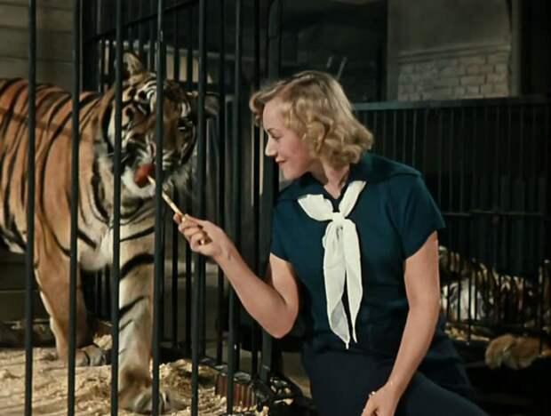 9 интересных фактов о фильме «Укротительница тигров»