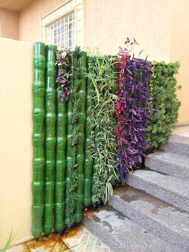 Вертикальный сад из бутылок. | Фото: Roomadness.com.
