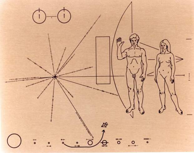 Pioneer[1]