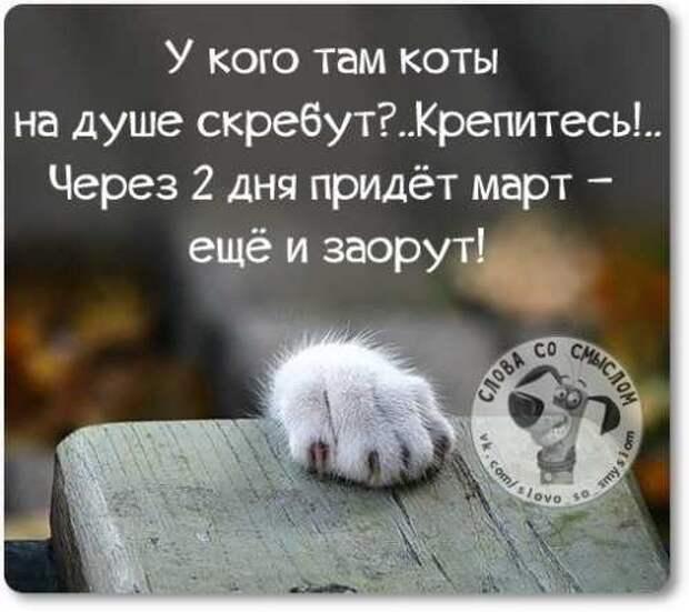 5402287_1425214720_voskresnovesenniefrazyvkartinkah24 (500x445, 25Kb)