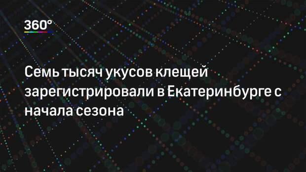 Семь тысяч укусов клещей зарегистрировали в Екатеринбурге с начала сезона