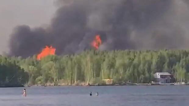 Лесной пожар в Тюменской области охватил более 100 га