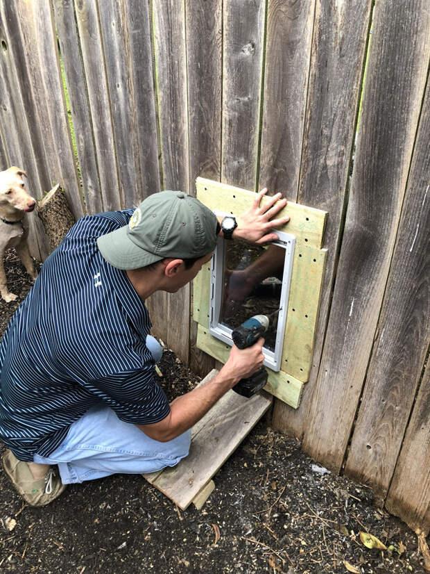 Для того, чтобы общаться, две соседские собаки рыли ямы под забором. И тогда их владельцы решили на этот шаг