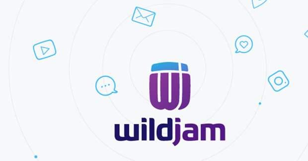 АДВ может купить долю в агентстве по работе с блогерами WildJam