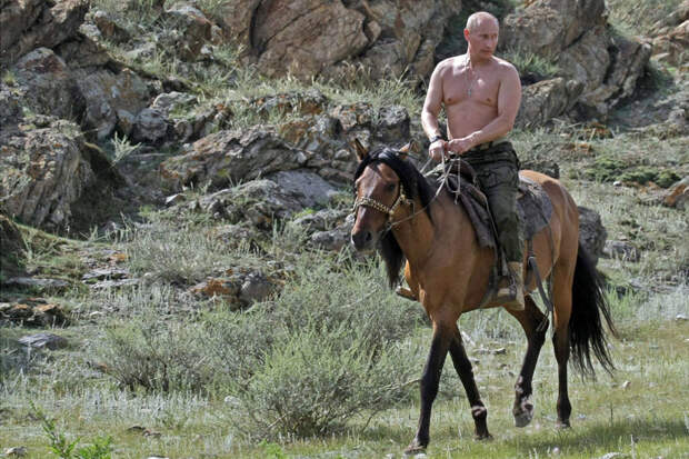 putin-horse