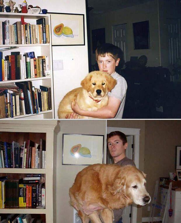 Наши любимые животные: фото до и после взросления