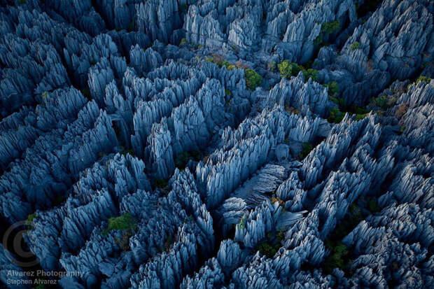 «Каменный лес» на Мадагаскаре (15 фото)