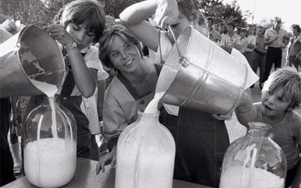 Почему советское молоко прокисало быстро, а российское хранится месяцами?