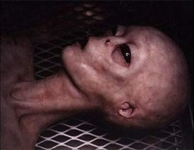 Случай с венесуэльским доктором, который нашел возле дороги диск с телами мертвых пришельцев