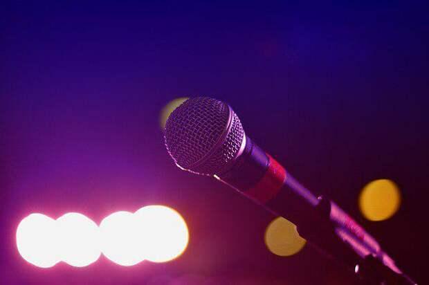 Микрофон/Фото: pixabay.com