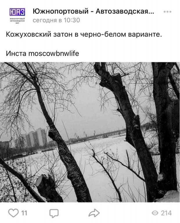 Фото дня: холодный Кожуховский затон